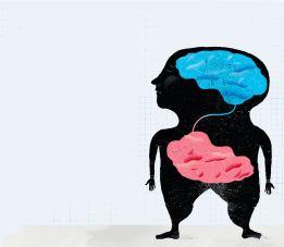 gut brain 2
