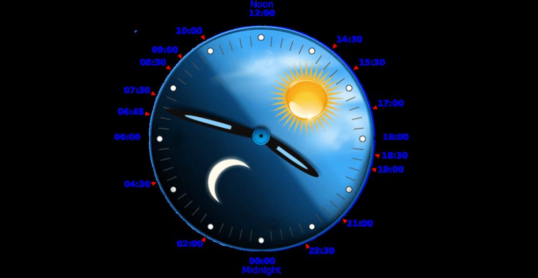 daily-circadian-rhythm